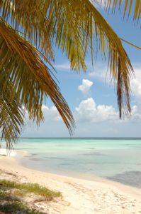 beach-599259_1280