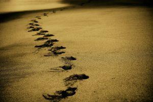 soul purpose, life path, soul journey, medium, psychic